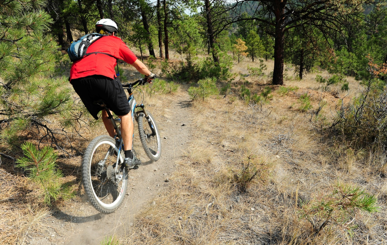 Best Beginner Sport Bike >> Great Beginner Trails: Definition and 10 Examples - Singletracks Mountain Bike News