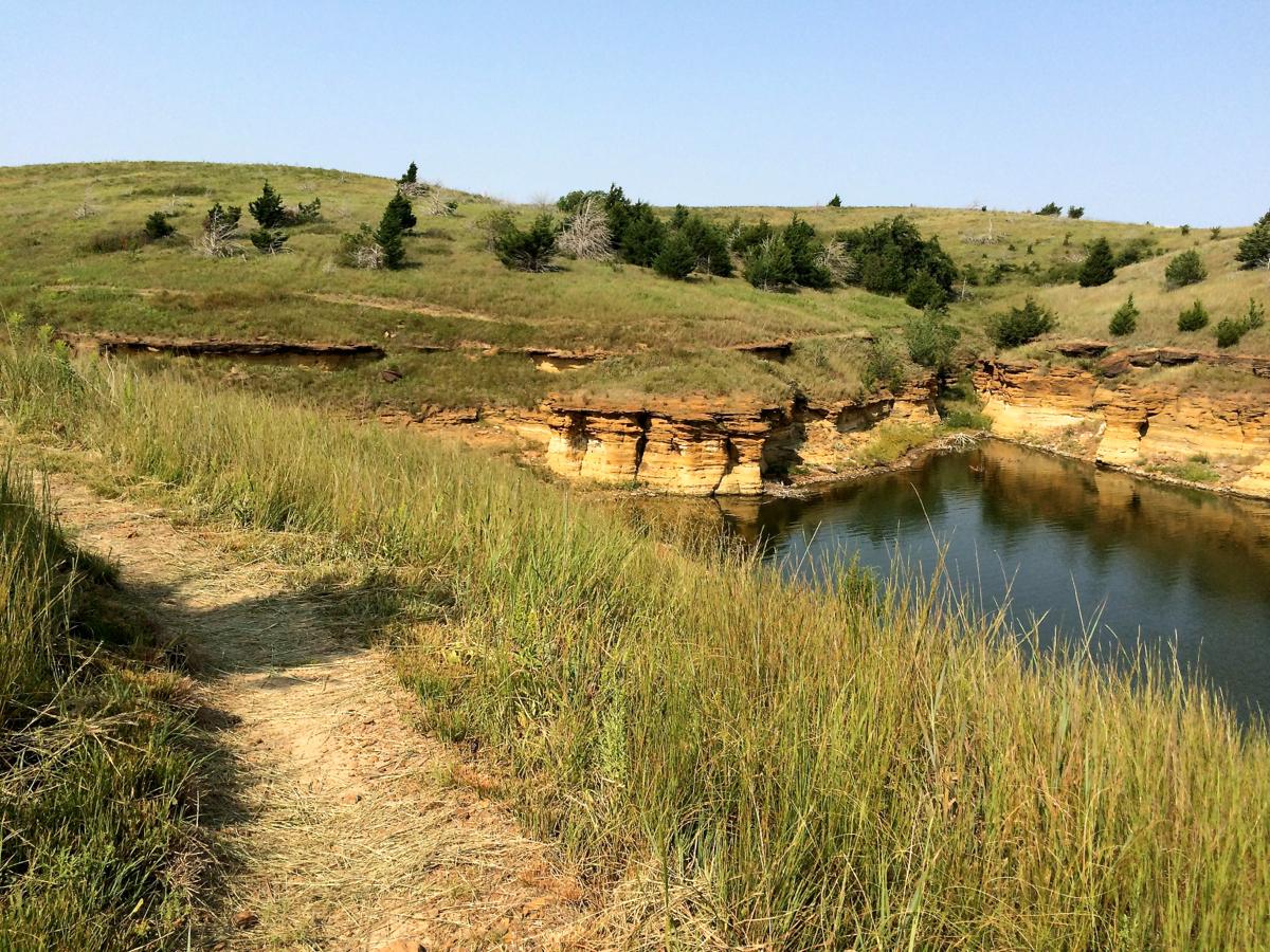 switchgrass-trails