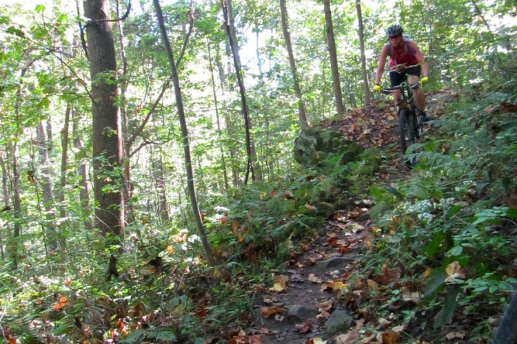 Best Snow Tires >> Ride Report: Rattling Creek, Pennsylvania - Singletracks Mountain Bike News
