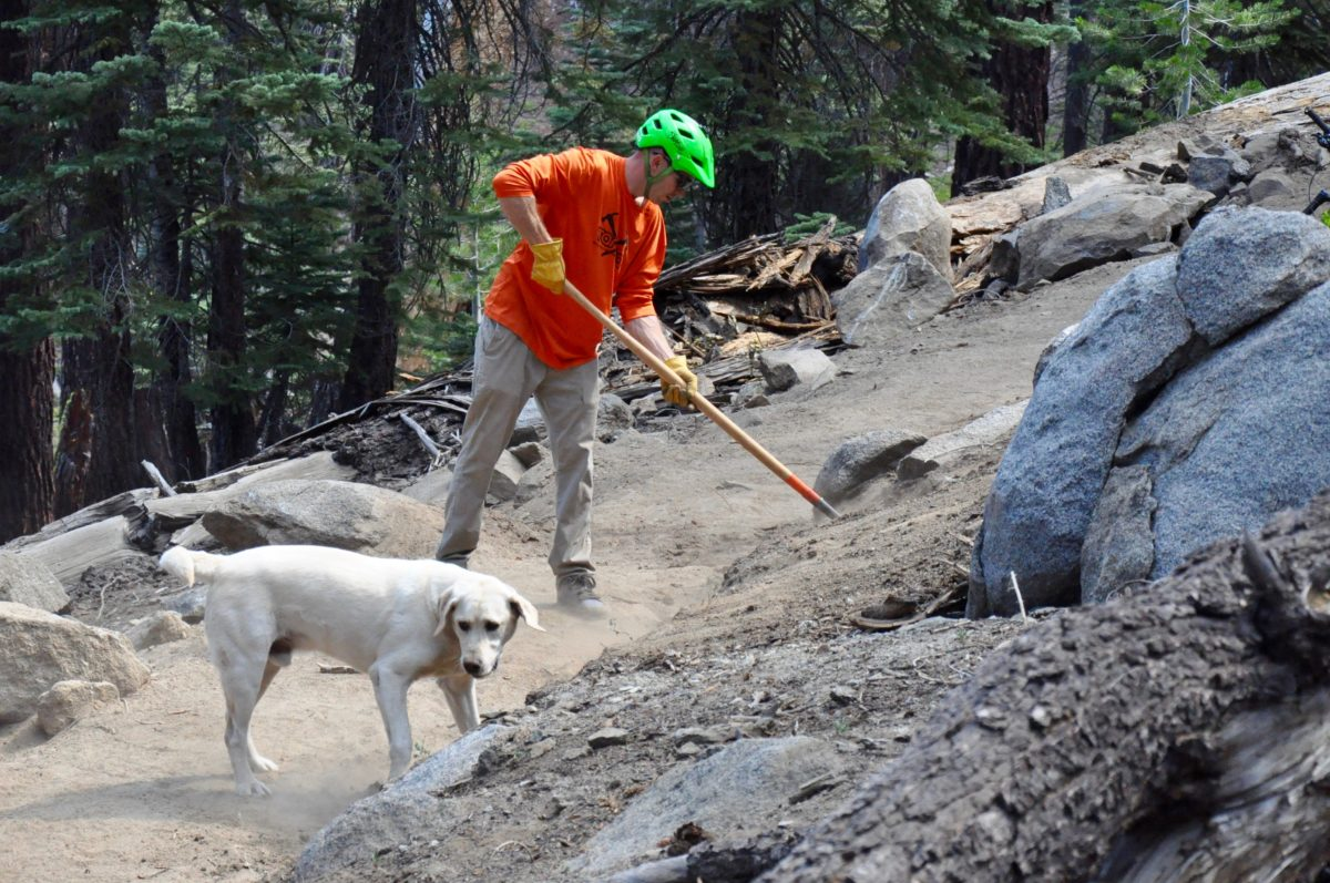 TAMBA volunteer and his buddy working on the new Kingsbury Stinger Trail.