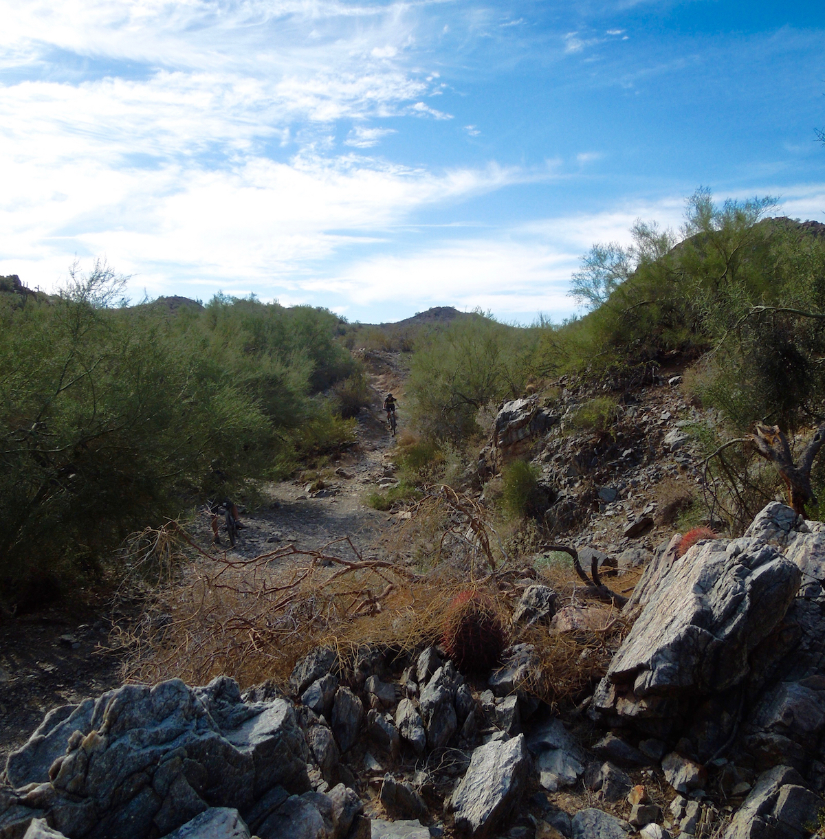 Trail8_1