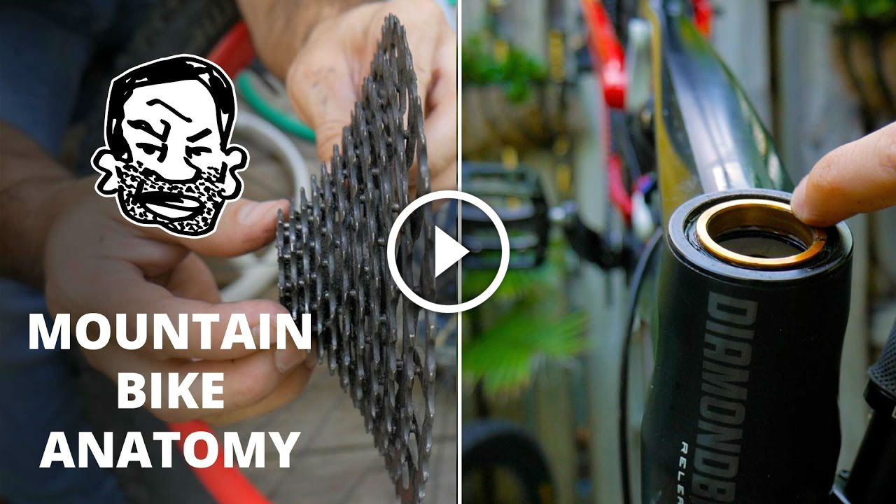 Watch: Mountain Bike Anatomy - 50 Parts in 5 Minutes