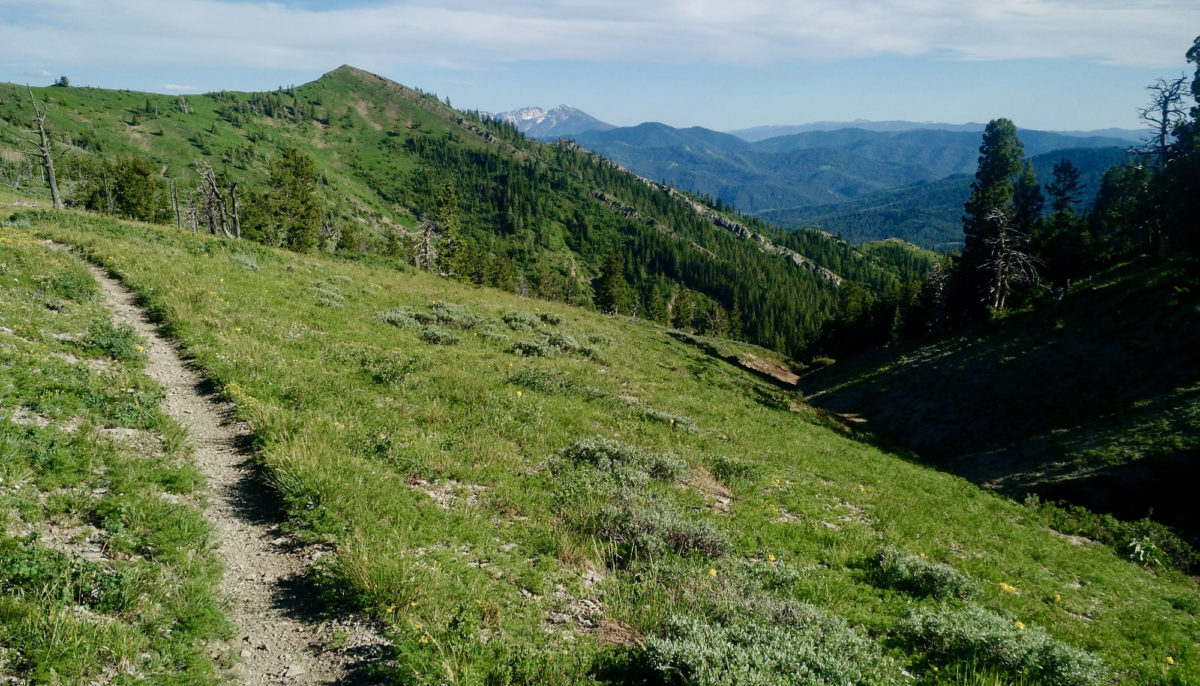 Heading south on great singletrack -- Red Mountain in the forefront with the Snake River Range in the distance.