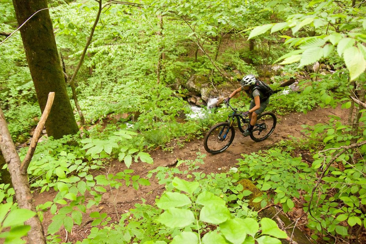 Pivot Mach 4 Carbon Daniel Ridge Waterfall