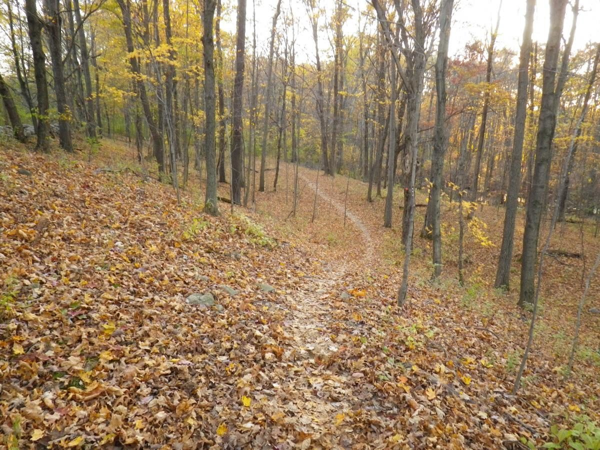 Five2Ride: Five of the Best MTB Trails in New York ...