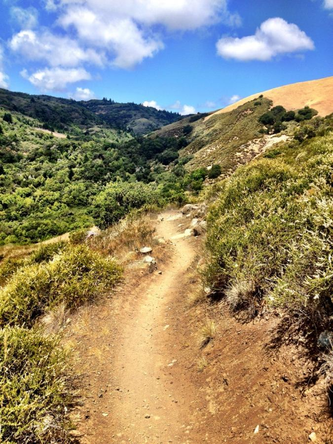 Sweet Tamarancho singletrack. Photo: Greg Heil