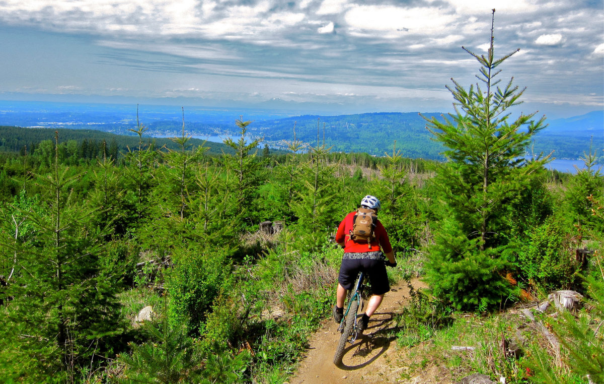 Overlooking Bellingham from Galbraith Mountain. Photo: Vik Approved, via Flickr Creative Commons