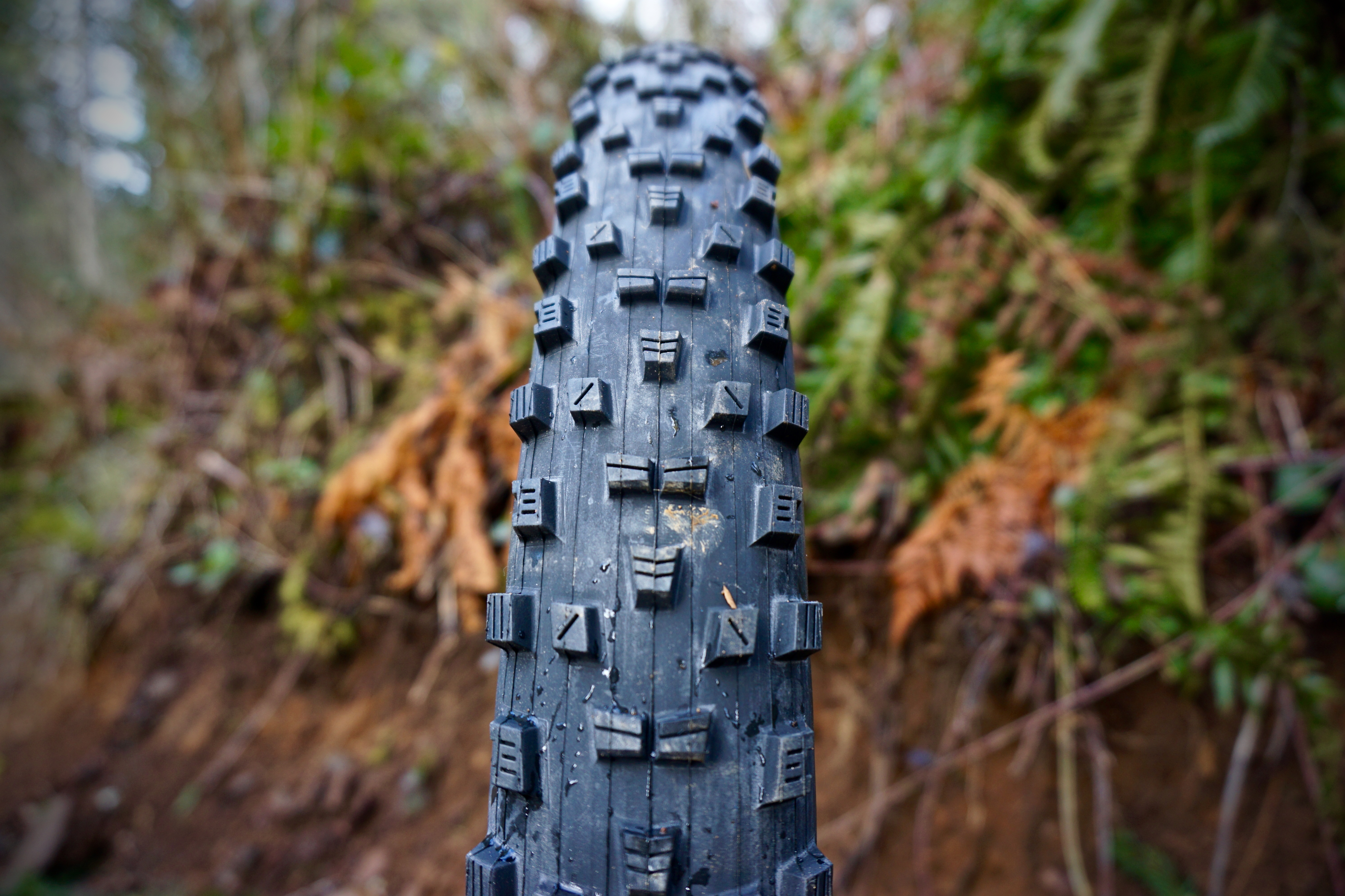 maxxis forekaster  tire review singletracks mountain bike news