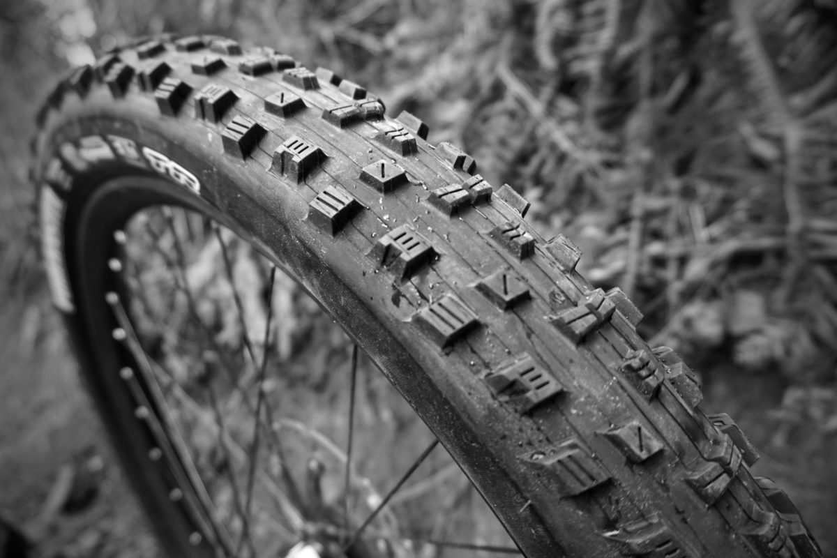 Maxxis Forekaster 2 6 Quot Tire Review Singletracks Mountain