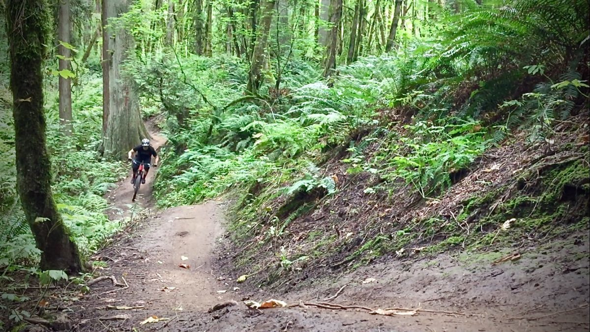 Larison Rock Trail. Photo: Chris Daniels