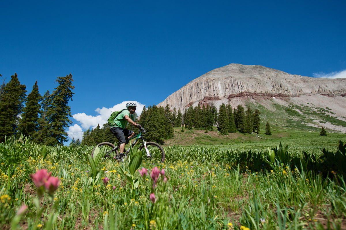 Pass Trail. Photo courtesy of Scott DW Smith.