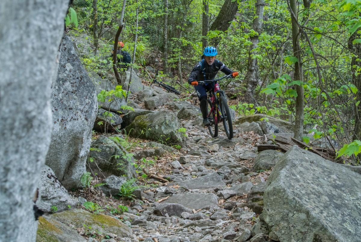 pisgah forest senior singles Explore pisgah national forest that surrounds asheville north carolina with hiking trails, camping, picnics, mountain scenery and wildlife see 50 things to do.