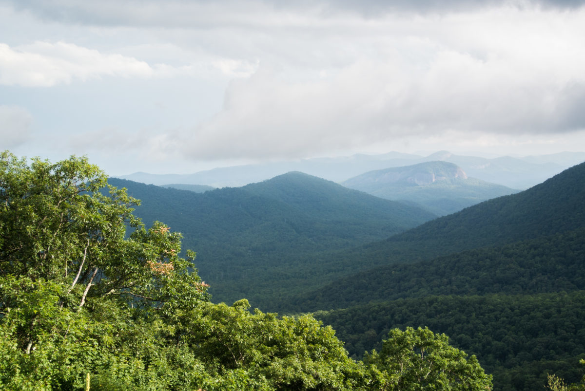 Pisgah from the Blue Ridge Parkway (photo: Aaron Chamberlain)