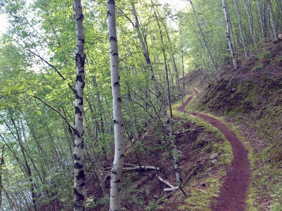 Cuyuna Lakes' delightful Sidewinder Trail. Too bad it's over with in the blink of an eye. (photo: Mark Larson)