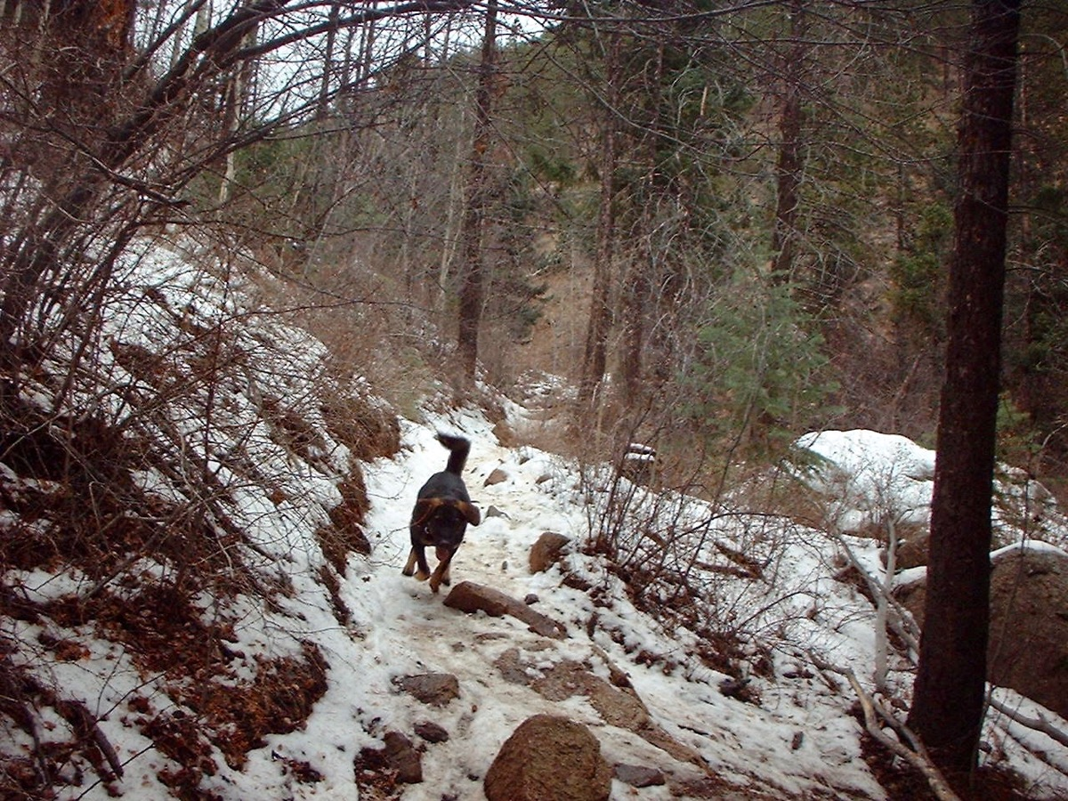 trail, hiking, snow, winter, rocks