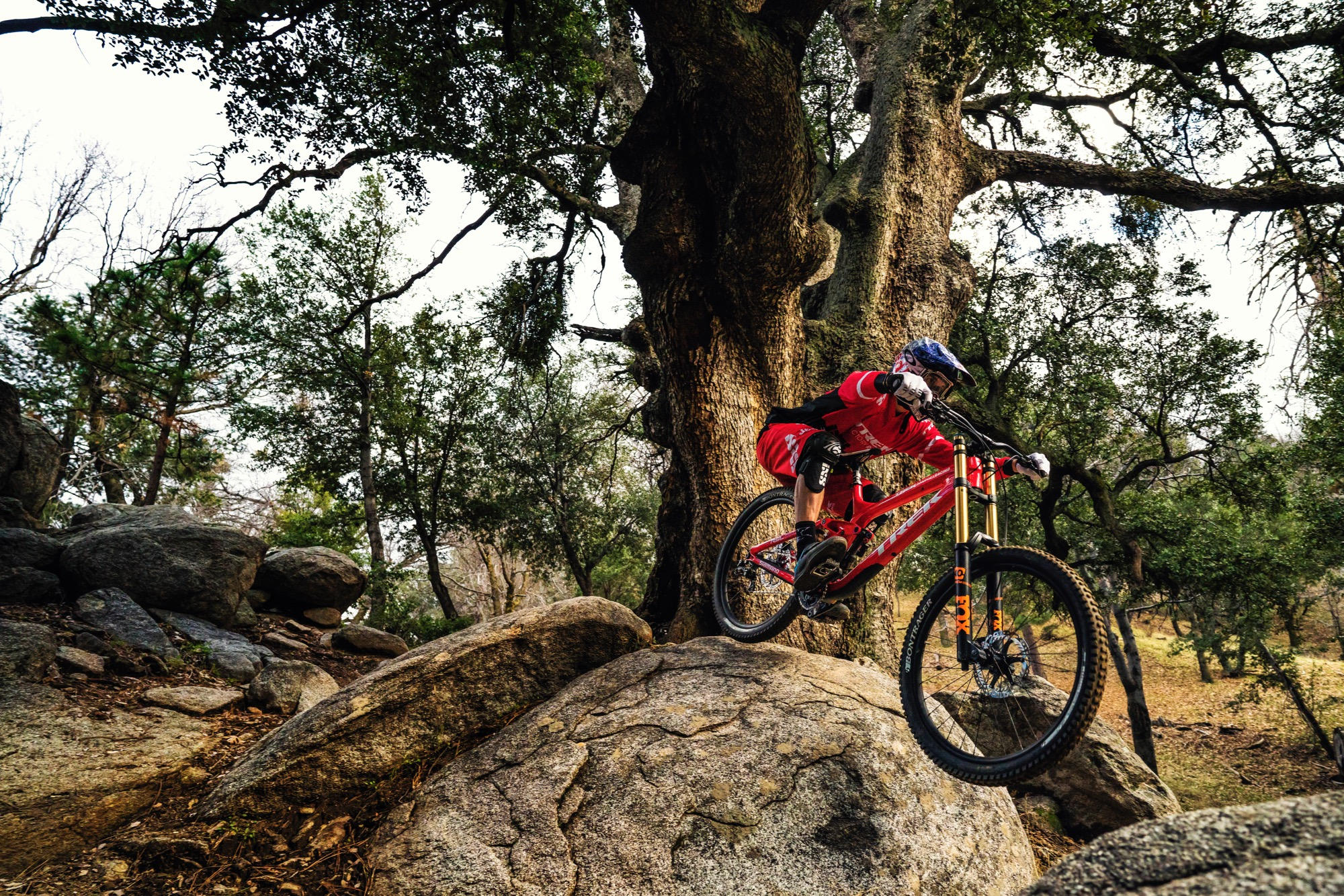 Trek Announces New 29er Session 9 9 Dh Bike Singletracks