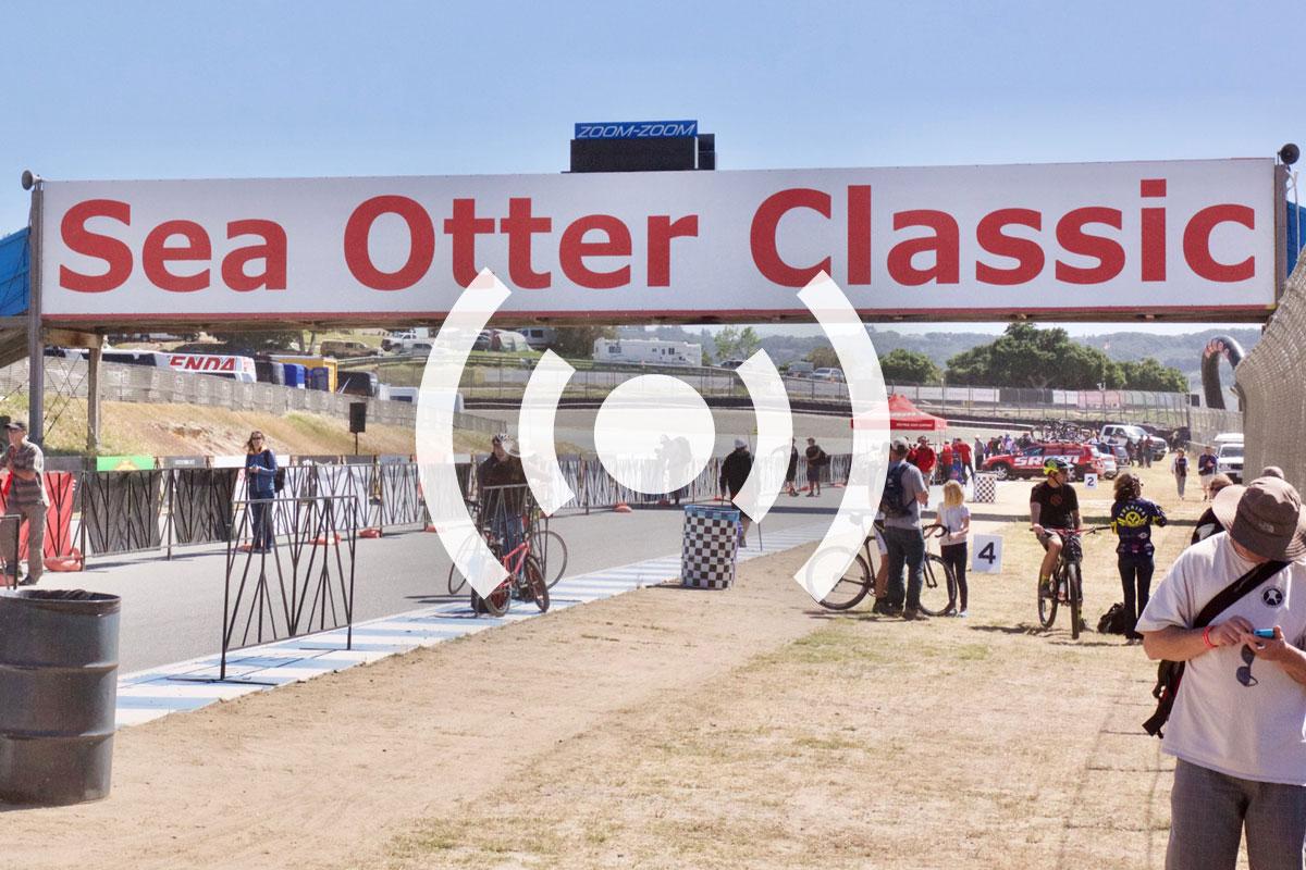 sea_otter_podcast