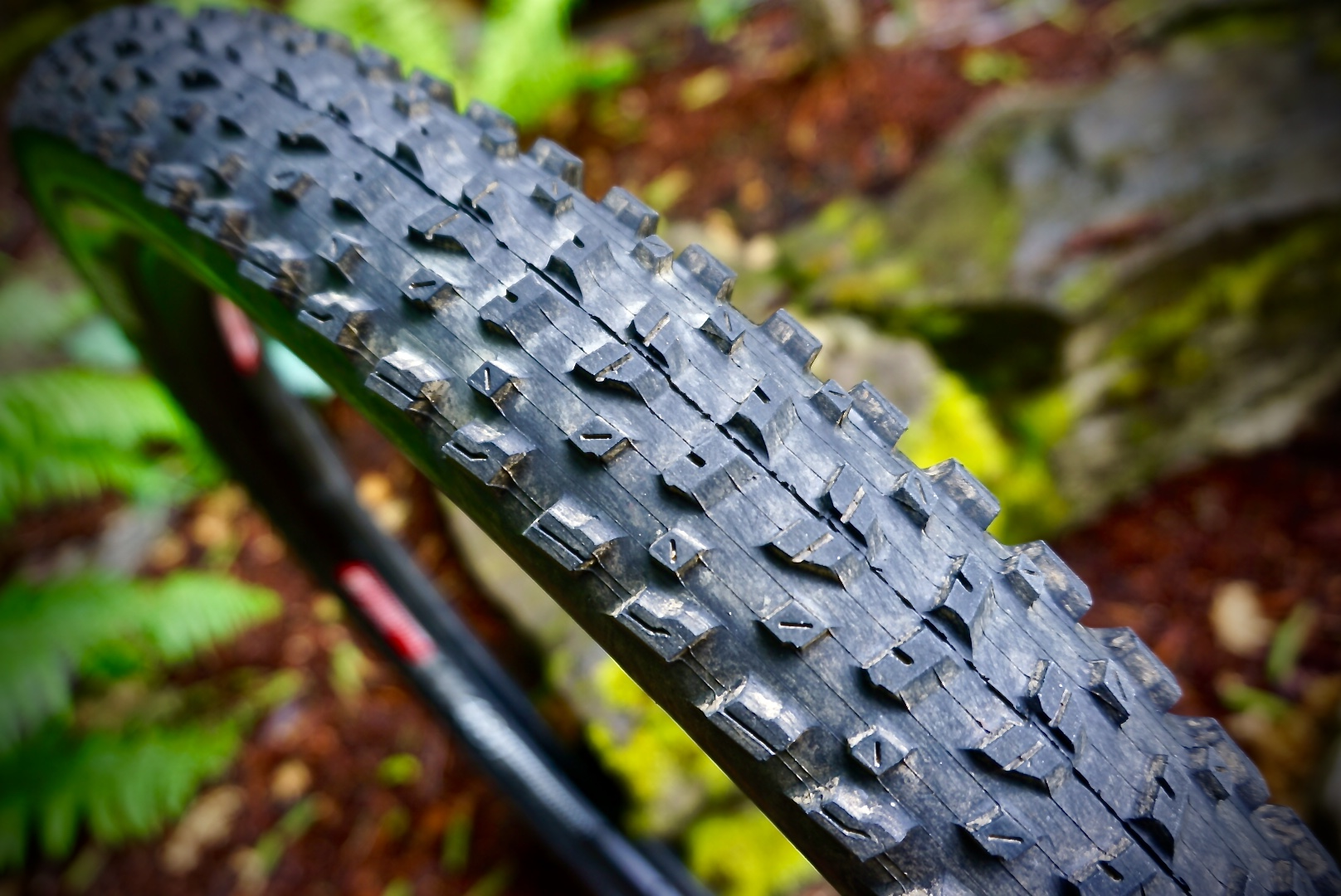 """Low Rolling Resistance Tires >> Are 2.6"""" Tires the Sweet Spot? Maxxis Rekon 2.6"""" Tire Review - Singletracks Mountain Bike News"""