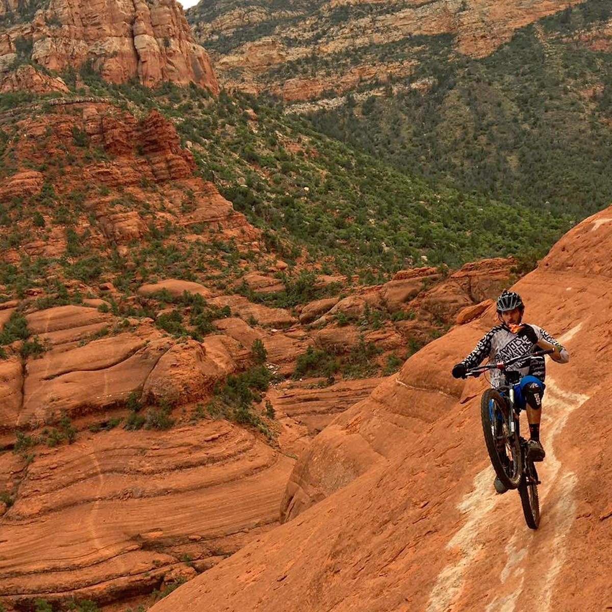 Everything You Need To Know About Mountain Biking Coconino