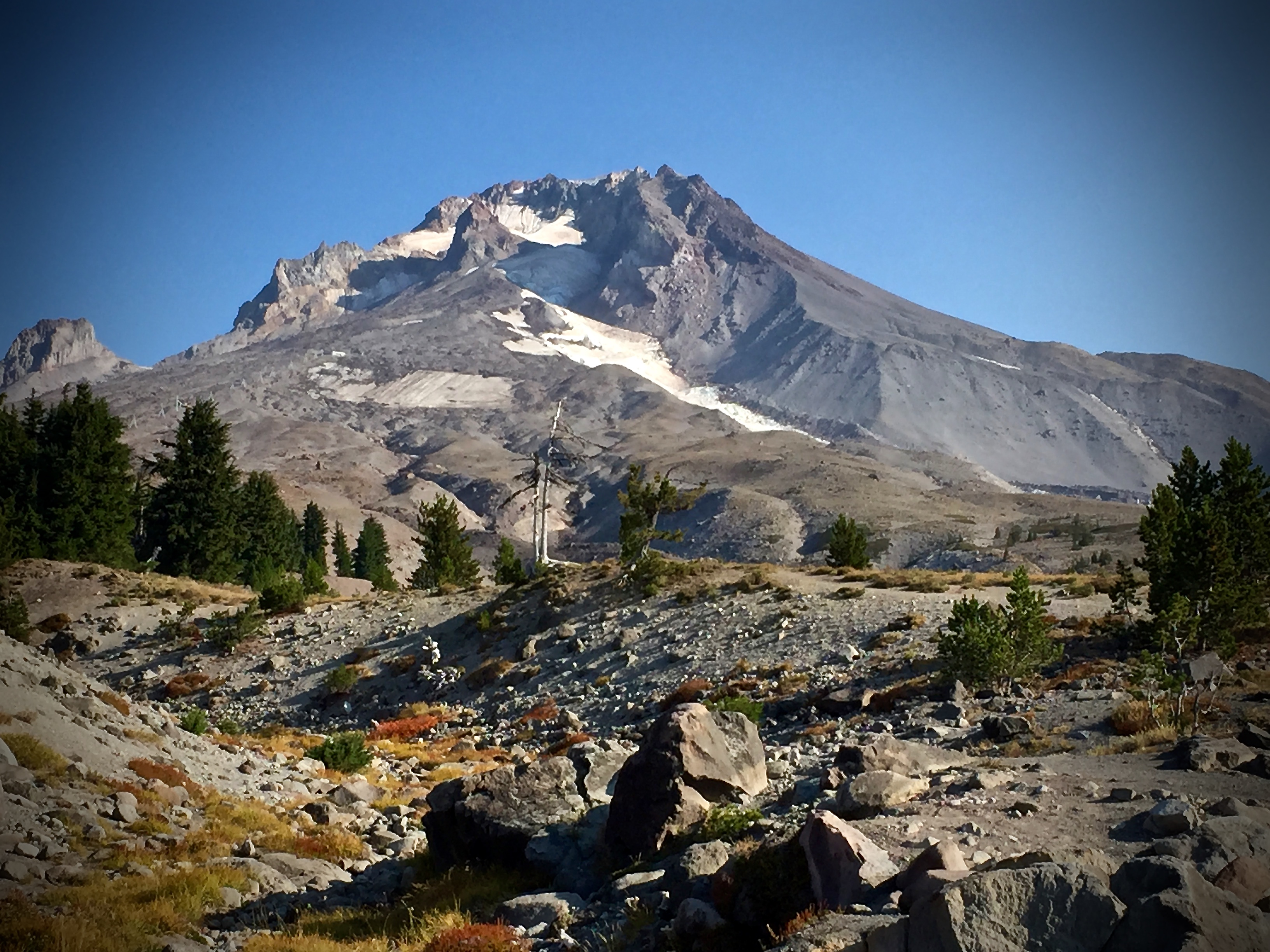 your guide to mountain biking the best trails in mount hood national