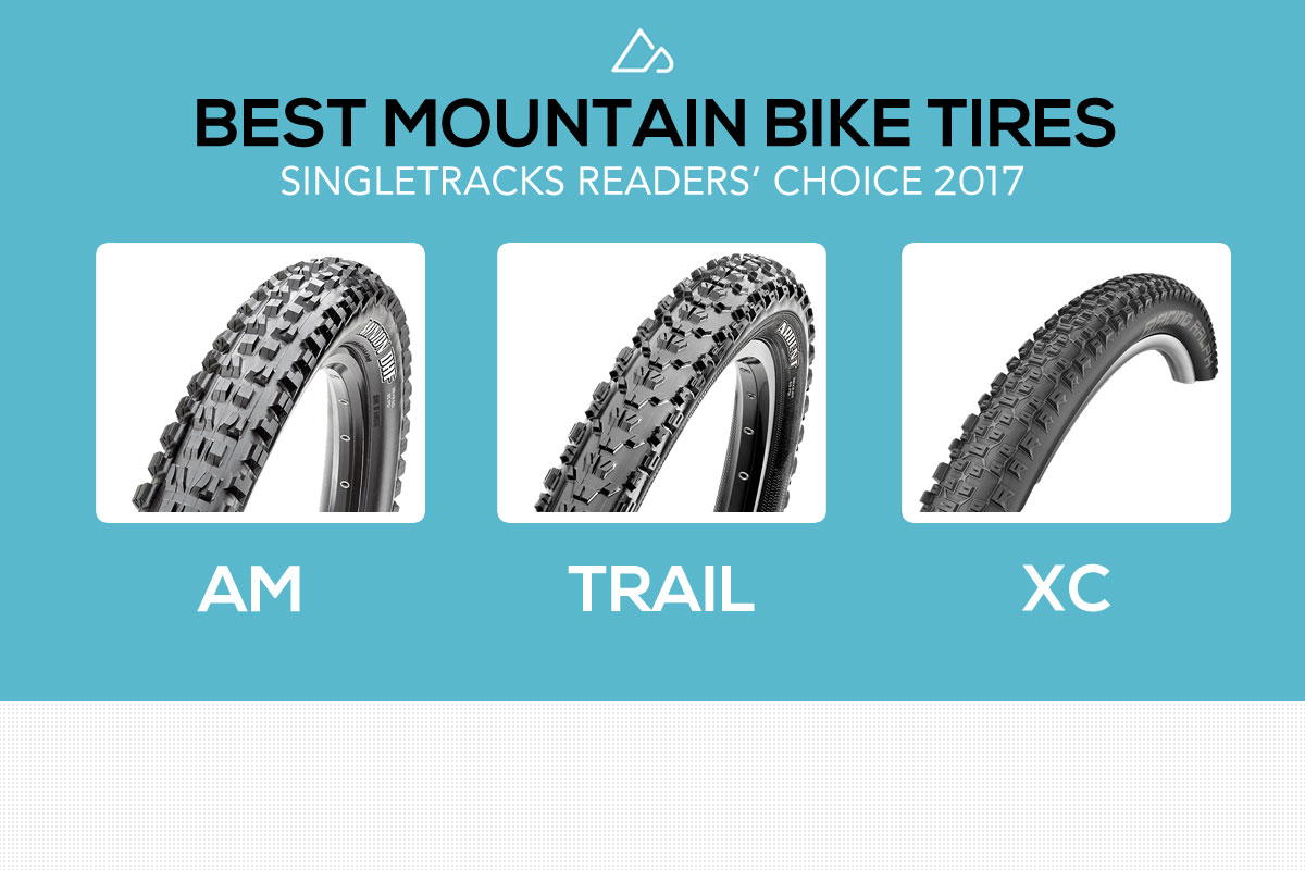 We Surveyed 2,100 Mountain Bikers to Find the Best Bike Tires of 2017