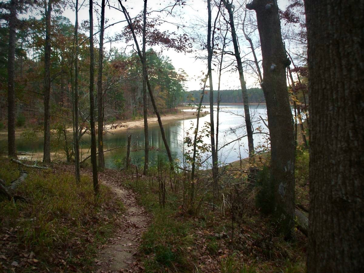 Five2ride best mountain bike trails in sumter national for Sumter national forest cabins