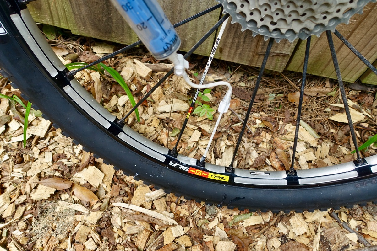 Panzer Mountain Bike Tire Insert Review - Singletracks Mountain Bike