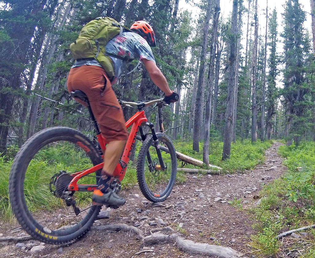 montana mountain biking case study solution