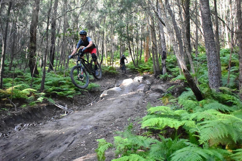 A Mountain Bike Trail Guide to Sydney, Australia: 6 Spots to Explore on Your Trip - Singletracks Mountain Bike News
