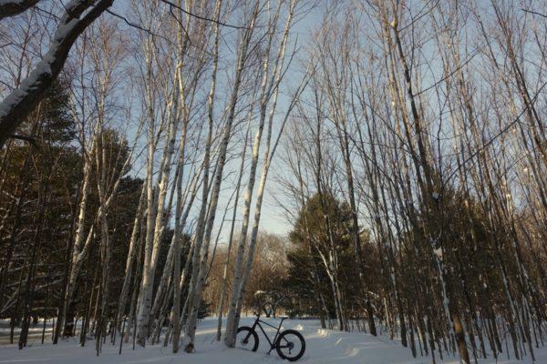 giant_yukon_fat_bike - 10