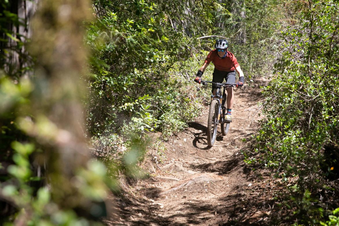 Review: The Updated and Refined Ibis Ripley 29er Trail Bike is Lighter, Even More Capable