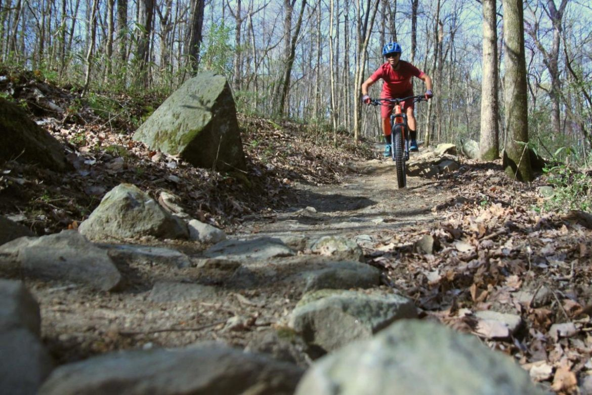 Mountain Biking the Barbecue Trail: The Best Places to Ride and Eat BBQ - Singletracks Mountain Bike News