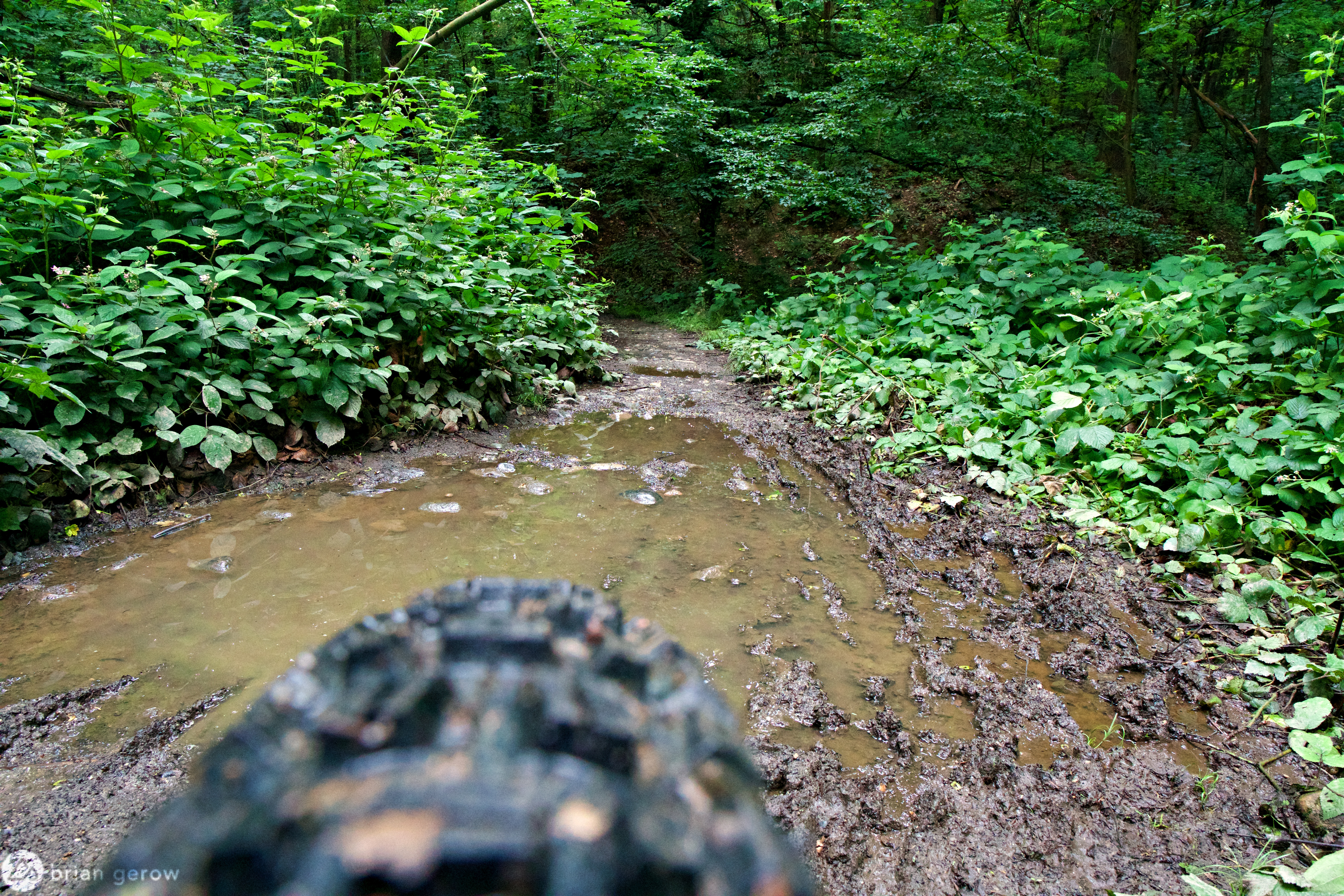 Sunday Survey: What is Your Approach to Riding Local MTB Trails in the Rain? - Singletracks Mountain Bike News
