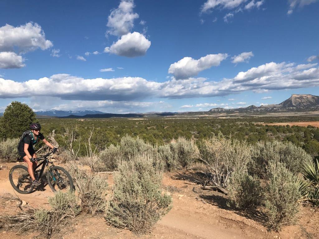 Native American Cliff Dwellings and Mountain Biking in Cortez, Colorado - Singletracks Mountain Bike News