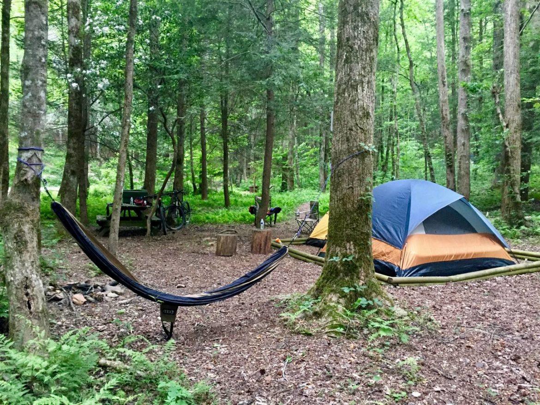 Mulberry Gap Campsite
