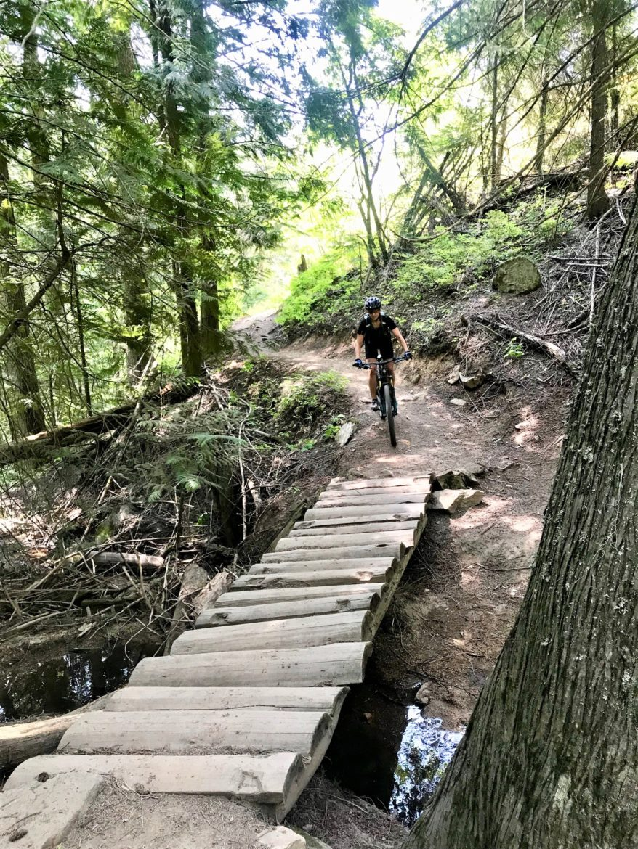Singletracks and Moose Tracks in Moscow, Idaho - Singletracks Mountain Bike News