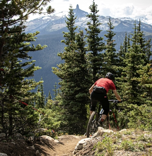 Ride Top of the World in Whistler Bike Park, Where You Can Choose Your own Epic - Singletracks Mountain Bike News