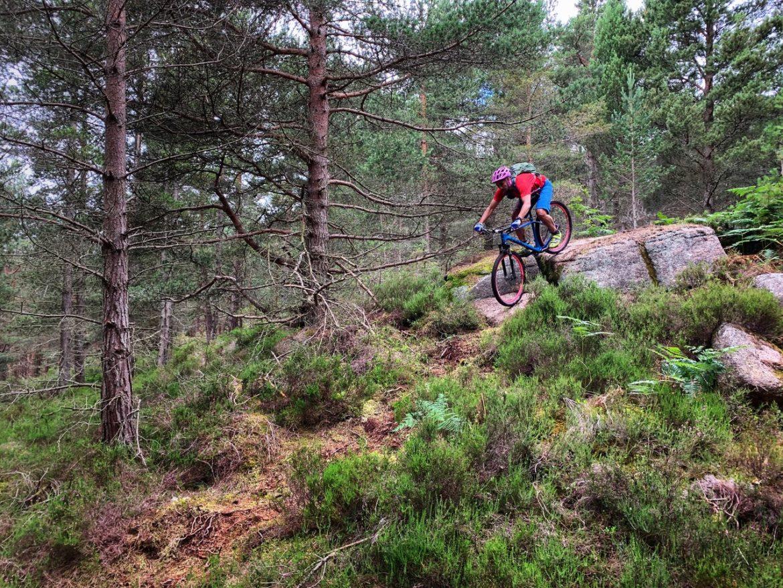 Scotland's Aberdeenshire Mountain Bike Association Is Working to Legitimize A Massive Network of Unauthorized Singletrack - Singletracks Mountain Bike News