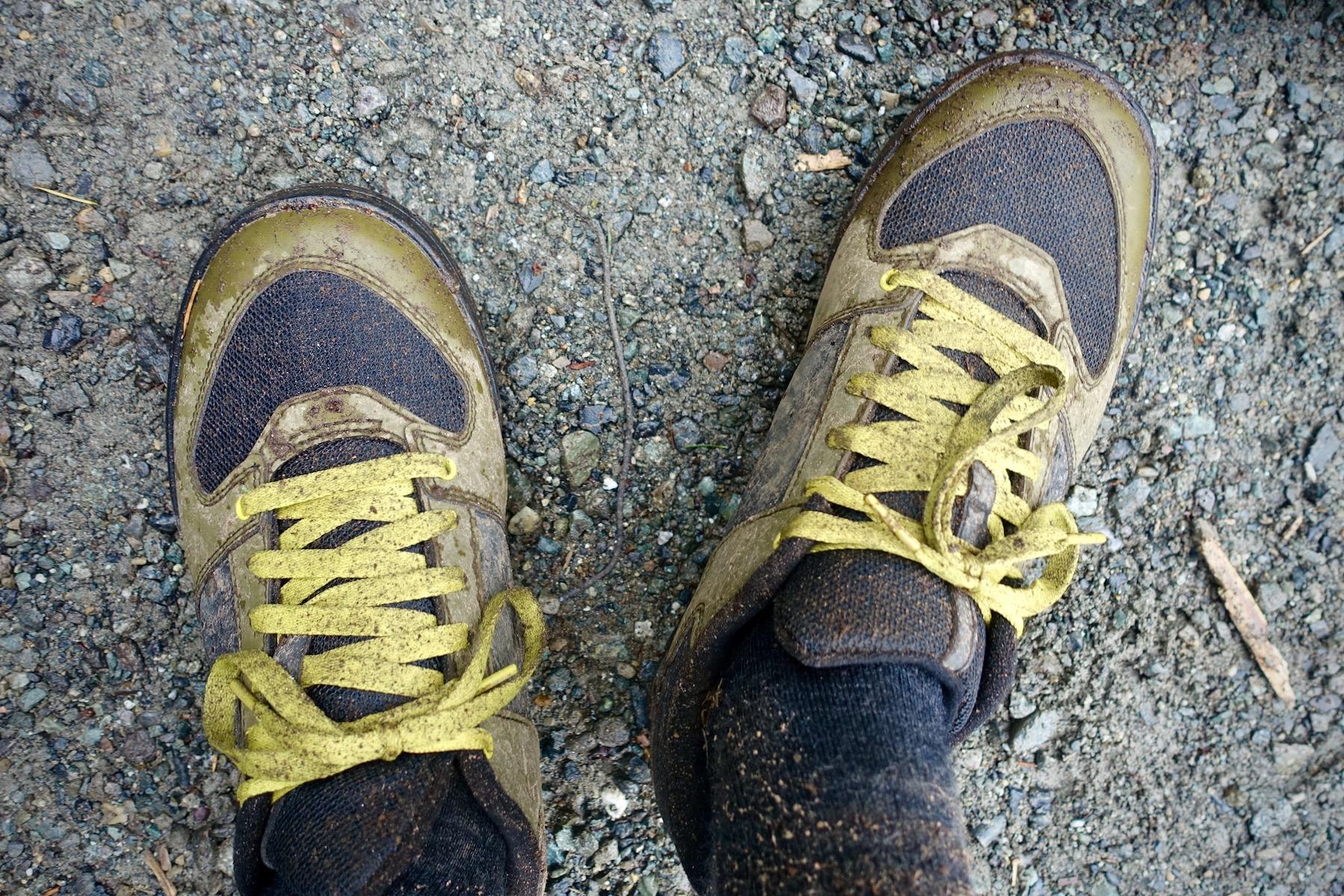 Shimano AM5 Clipless Mountain Bike Shoe