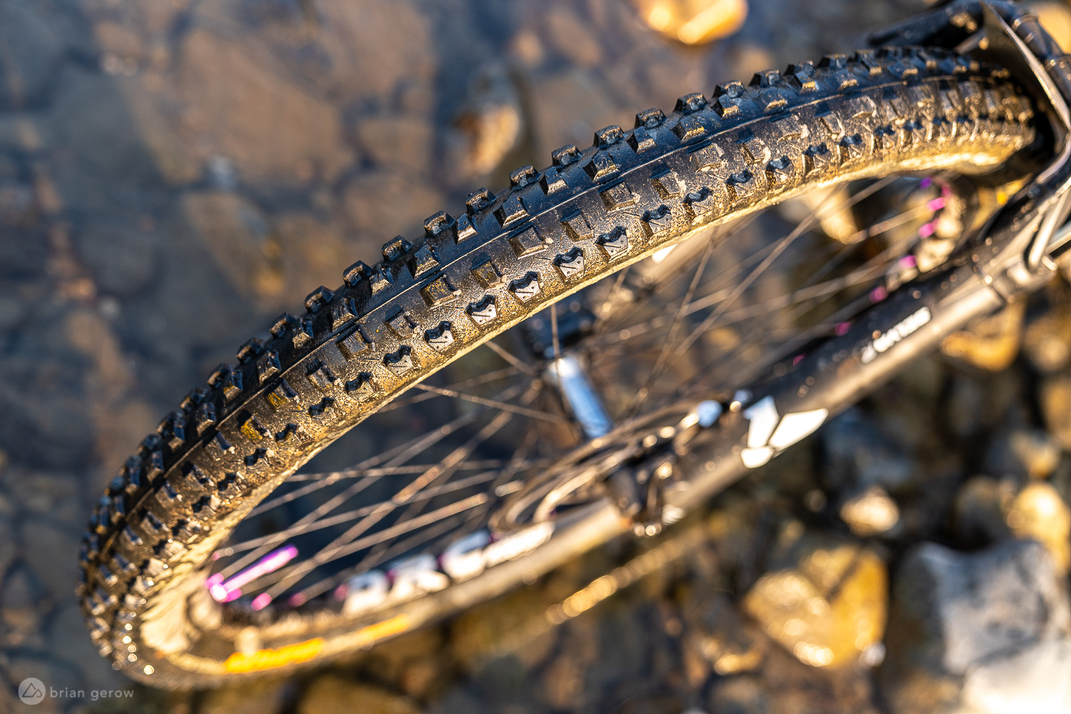 Grippiest MTB Tires of the Year: Continental Der Baron and Der Kaiser Combo [Review] - Singletracks Mountain Bike News