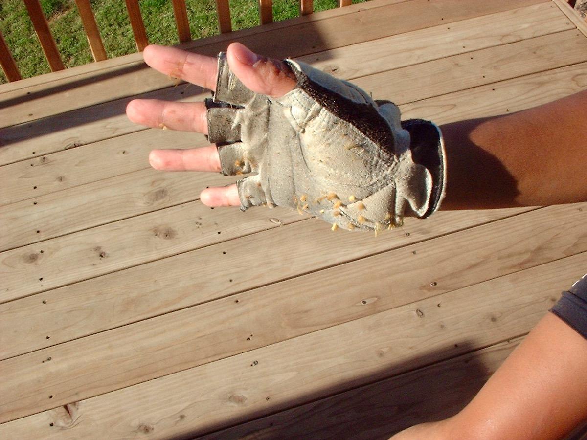 Full Finger or Fingerless Gloves for Mountain Biking? - Singletracks Mountain Bike News