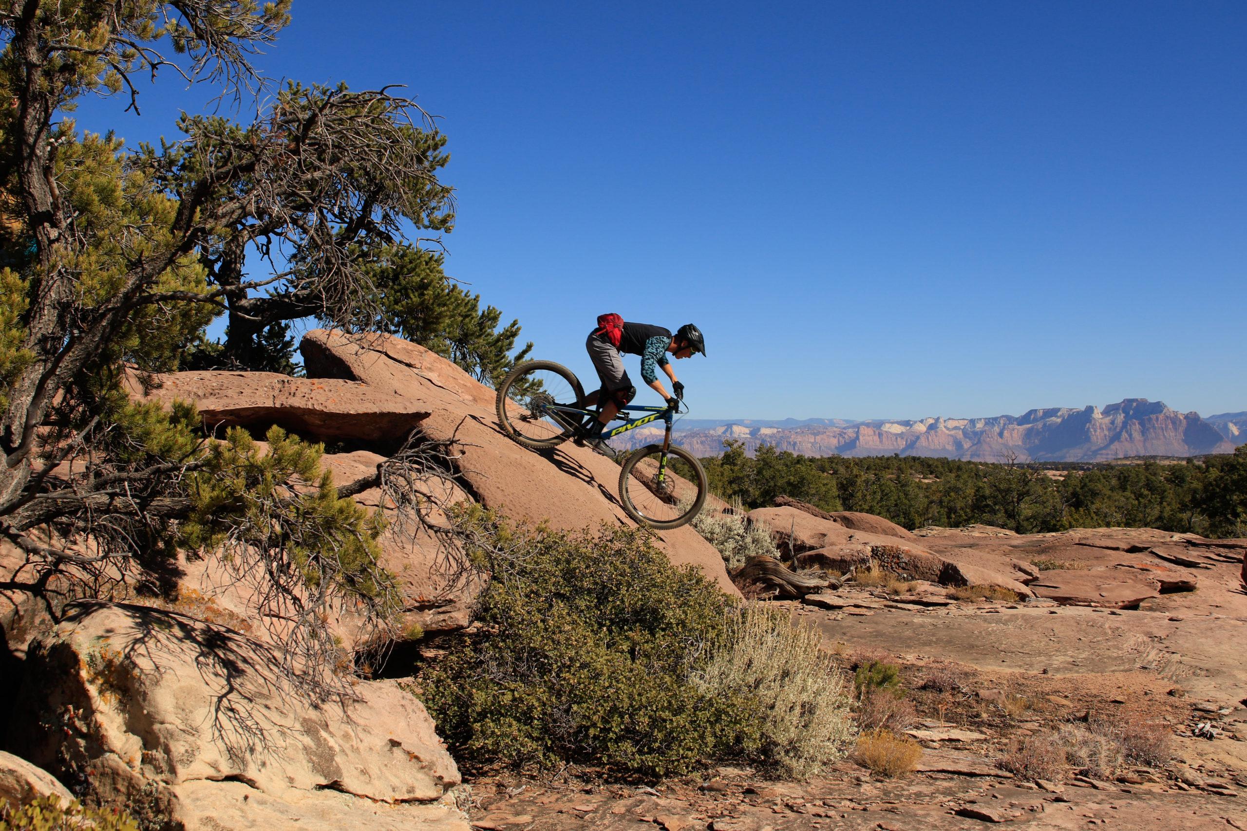 Shred - Mountain Biking - portada