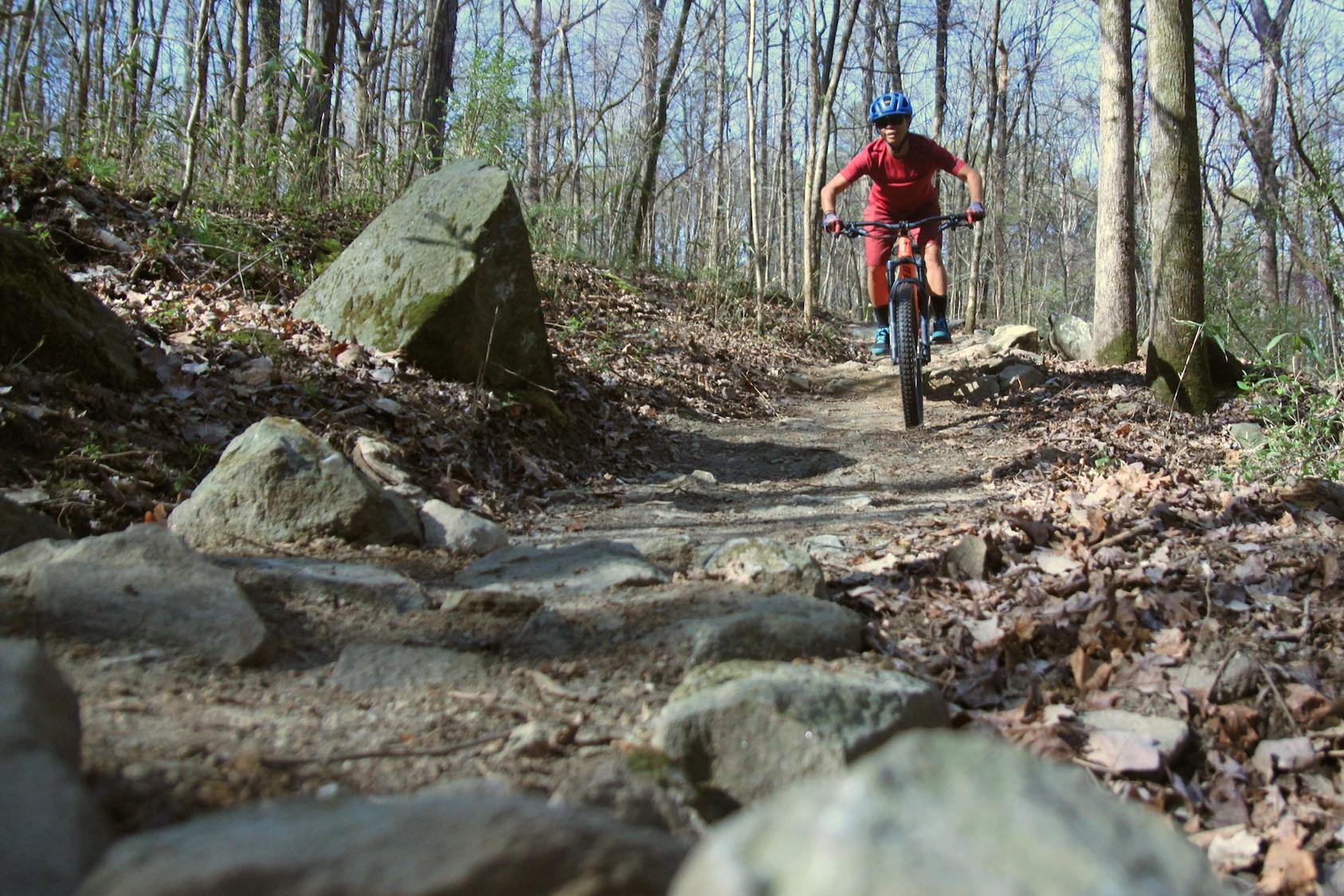 How is Coronavirus Affecting Your Mountain Biking? [Survey] - Singletracks Mountain Bike News