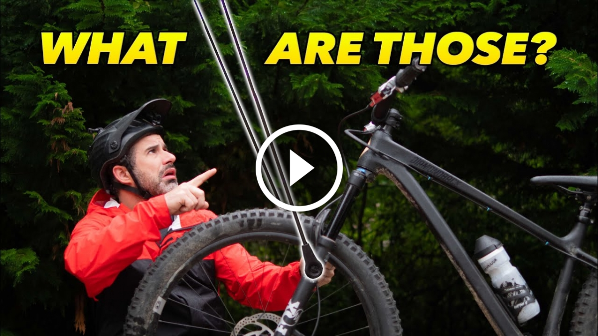 What to Do About Those Darn Spider Webs on The Trail [Video] - Singletracks Mountain Bike News