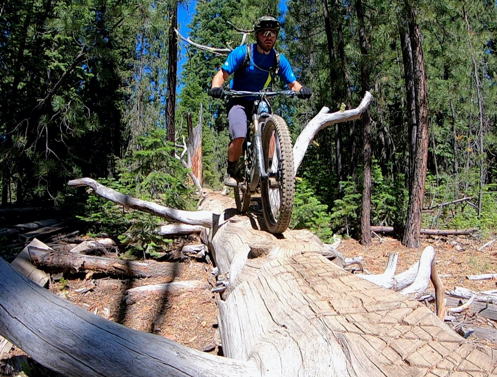 A Tale of Two Pockets: Summer MTB Shorts Roundup - Singletracks Mountain Bike News