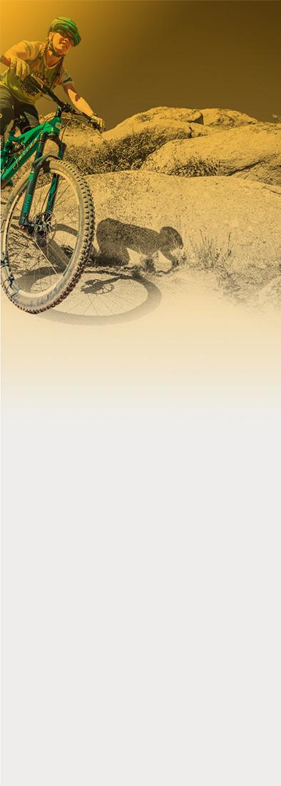 Singletracks Mountain Bike News - Mountain bike news, trails